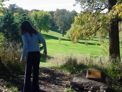 Ellsworth College Park, Main course, Hole 8 Long tee pad