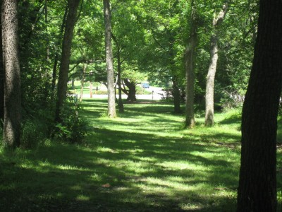 Ewing Park, Main course, Hole 3 Long tee pad