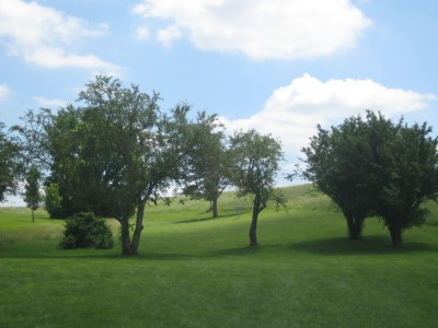 Ewing Park, Main course, Hole 14 Long tee pad