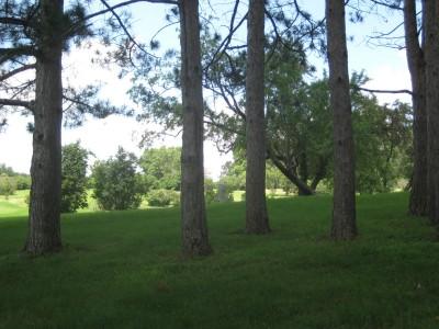 Ewing Park, Main course, Hole 15 Midrange approach