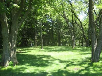Ewing Park, Main course, Hole 8 Long tee pad