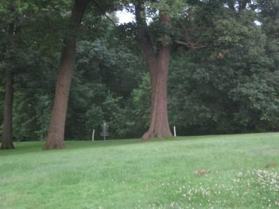 Grandview Park, Main course, Hole 8 Short approach
