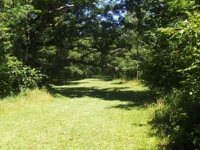Walnut Ridge Recreation Area, Main course, Hole 10 Short tee pad