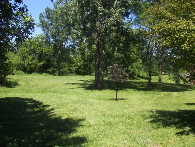 Walnut Ridge Recreation Area, Main course, Hole 8 Tee pad