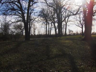 Sheldon Park, Main course, Hole 9 Midrange approach
