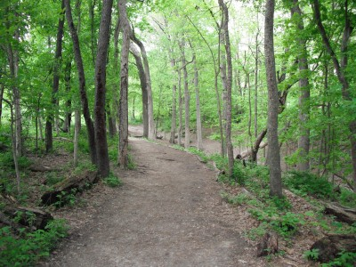 Turkey Creek, Main course, Hole 3 Tee pad