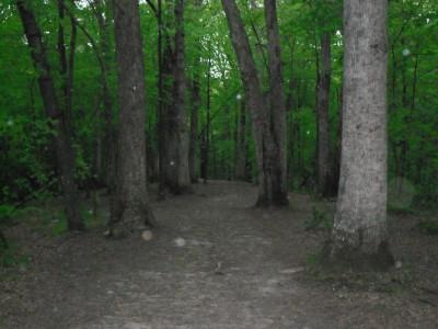 Turkey Creek, Main course, Hole 13 Tee pad