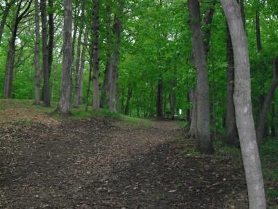Turkey Creek, Main course, Hole 15 Long tee pad