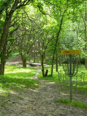 Fuller Park, Main course, Hole 4 Reverse (back up the fairway)