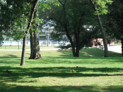 Maytag Park, Main course, Hole 17 Tee pad