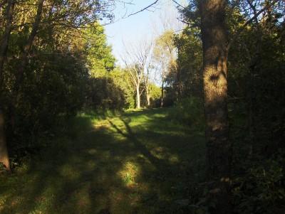 Big Creek State Park, Main course, Hole 9 Tee pad