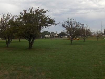 West Leach Park, Main course, Hole 2 Tee pad