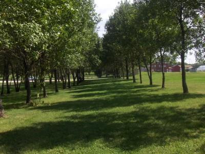 West Leach Park, Main course, Hole 9 Tee pad