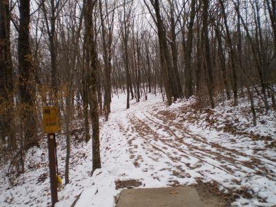 Wildcat Bluff, Main course, Hole 4 Long tee pad