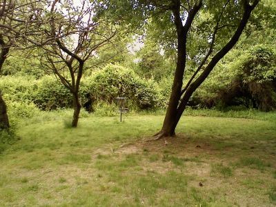 Killens Pond State Park, Main course, Hole 1 Short approach