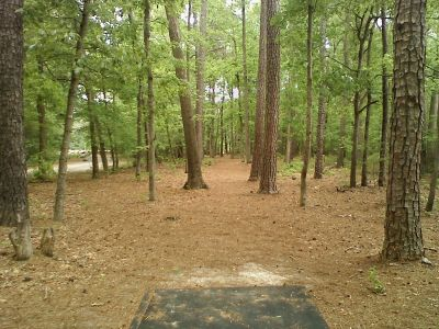 Trap Pond State Park, Main course, Hole 1 Tee pad