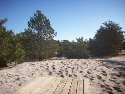 Cape Henlopen State Park, Main course, Hole 2 Tee pad
