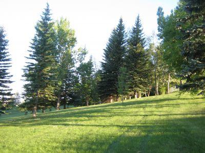 Park 96, Main course, Hole 14 Short approach