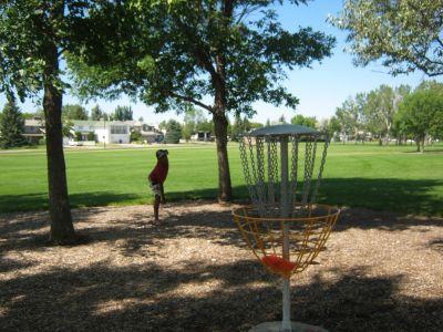Nicholas Sheran Park, Main course, Hole 2 Putt