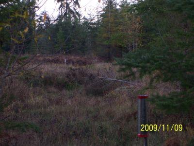 Black Creek Community DGC, Main course, Hole 3 Reverse (back up the fairway)