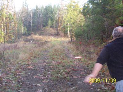 Black Creek Community DGC, Main course, Hole 11