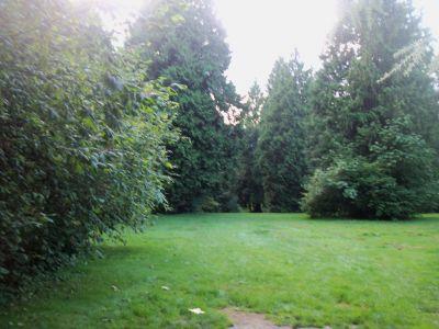 Robert Burnaby Park, Main course, Hole 8 Tee pad