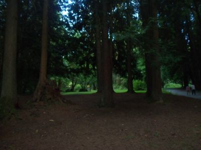 Robert Burnaby Park, Main course, Hole 3 Tee pad