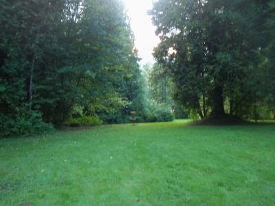Robert Burnaby Park, Main course, Hole 8 Short approach