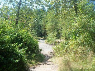 Langley Passive Park, Main course, Hole 4 Tee pad