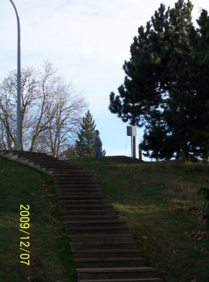 Bowen Park, Main course, Hole 8 Short tee pad