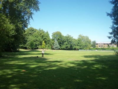 Winskill Park, Main course, Hole 9 Midrange approach