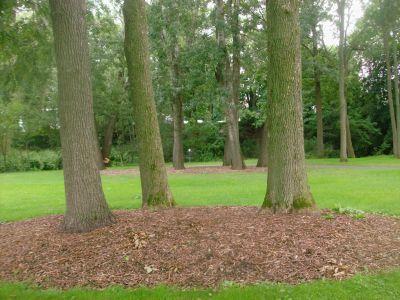 Optimist / Kinsmen Park, Main course, Hole 6 Long approach