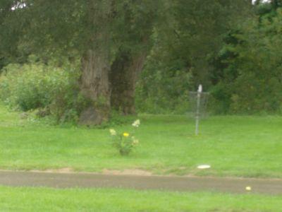 Optimist / Kinsmen Park, Main course, Hole 7 Putt