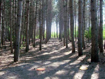 White Spruce Park, Main course, Hole 9 Short tee pad