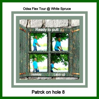 White Spruce Park, Main course, Hole 8 Putt