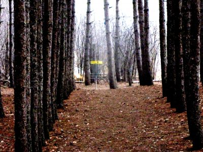 White Spruce Park, Main course, Hole 9 Short approach