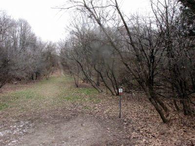 White Spruce Park, Main course, Hole 6 Short tee pad