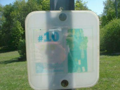 White Spruce Park, Main course, Hole 10 Short tee pad