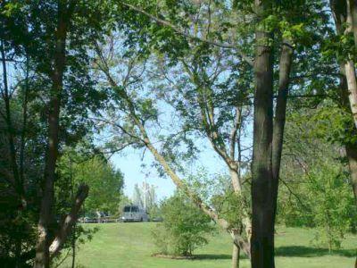 White Spruce Park, Main course, Hole 18 Long approach