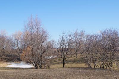 White Spruce Park, Main course, Hole 17 Tee pad
