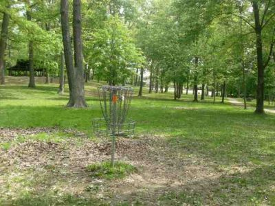 Mohawk DGC, Main course, Hole 12 Alternate pin (reverse)
