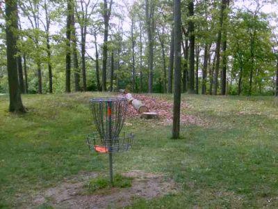 Mohawk DGC, Main course, Hole 11 Short tee pad