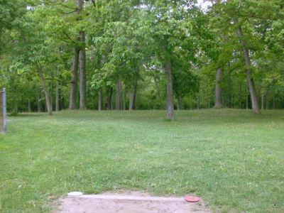 Mohawk DGC, Main course, Hole 8 Short tee pad