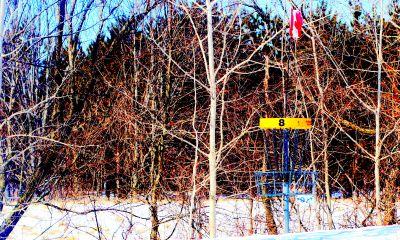 Christie Lake Conservation Area, Main course, Hole 8 Putt