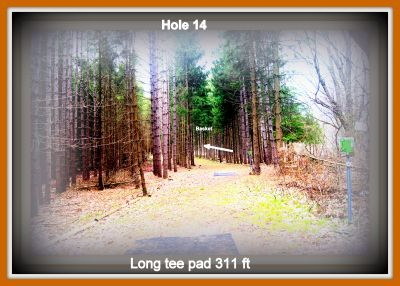 Christie Lake Conservation Area, Main course, Hole 14 Long tee pad