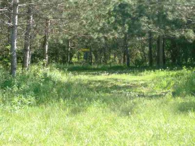 Christie Lake Conservation Area, Main course, Hole 1 Short approach
