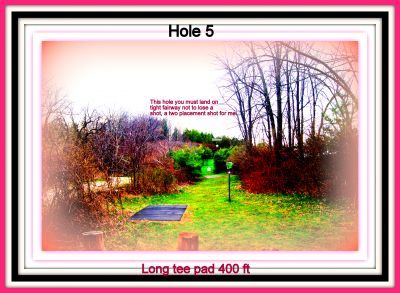 Christie Lake Conservation Area, Main course, Hole 5 Long tee pad