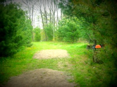 Christie Lake Conservation Area, Main course, Hole 16 Long tee pad
