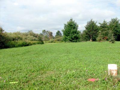 Rideau Acres, Main course, Hole 7 Short tee pad