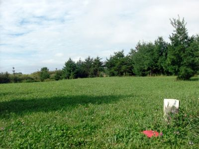 Rideau Acres, Main course, Hole 6 Short tee pad
